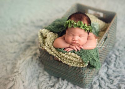 Garden-fairy-newborn-girl